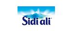 partenaire_sidi_ali