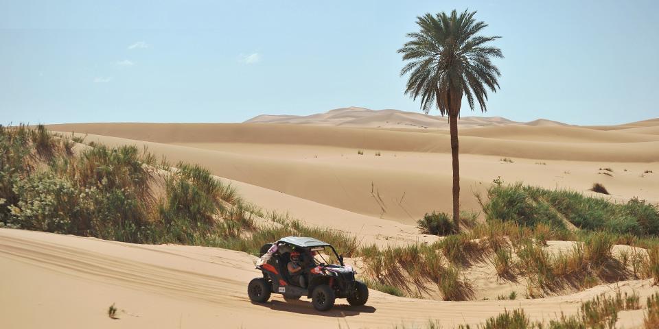 Arrivée directe Maroc : SSV - Quad - Moto | Trophée Roses des Sables